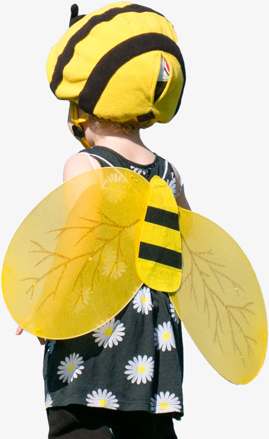 Child dressed as a bee